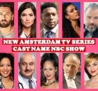 New Amsterdam TV Series Cast Name, NBC Show, Story Premise, Crew, Timing, Premier, Plot, Wiki, Genre, Start and More