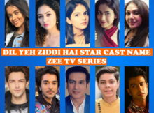 Dil Yeh Ziddi Hai Full Cast & Crew Name, Zee TV Show, Crew Members, Wiki, Genre, Start, Timing, Images