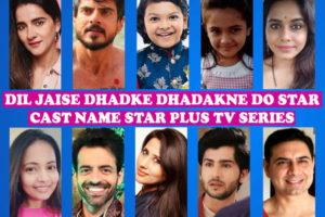 Dil Jaise Dhadke Dhadakne Do Cast Name, Crew, Star Plus TV Series, Story Premise, Wiki, Genre, Premier, Timing, Start Date, Images